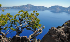 Crater Lake NP, United States Nikon D700 18mm - 1/320 - f/9 August 14th, 2010 12 : 55 PM