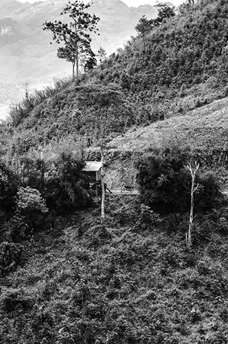 Lao Cai Province, Vietnam Nikon D700 - 82mm - 1/200 - f/7.1 May 1st 2013 12 : 06 PM